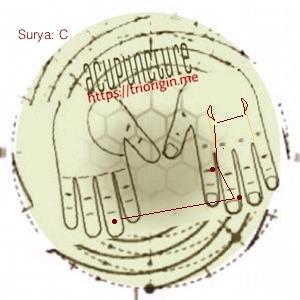 surya-C