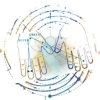 WEIGHT gain is possible with modality acupuncture on two fingers!